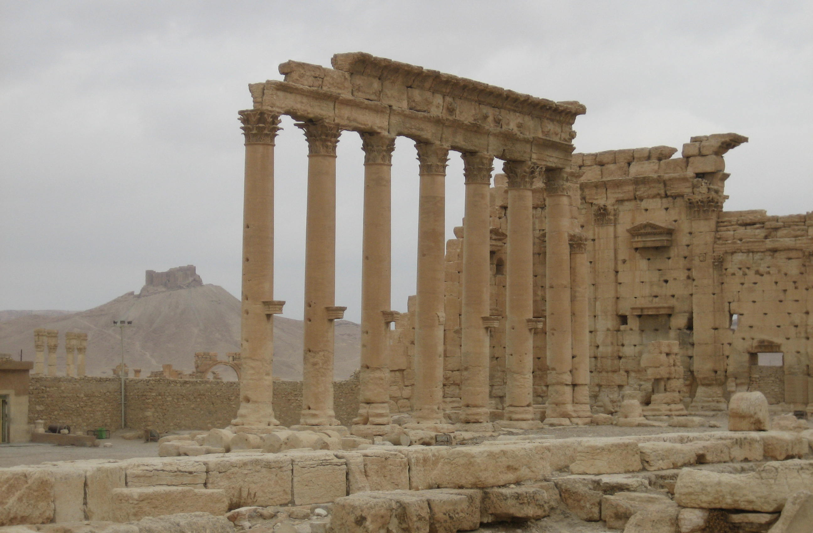 Figure 4: Palmyra, Temple of Bel (foreground) and Qalaat Shirkuh (background) (photo by Tate Paulette, 2005)