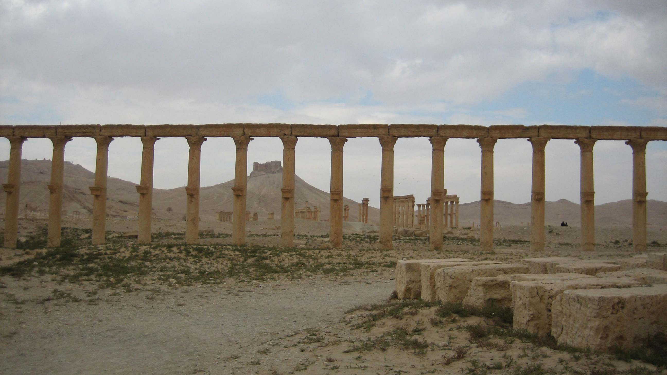 Figure 1: Palmyra, agora (foreground), Colonnaded Street and Qalaat Shirkuh (background) (photo by Tate Paulette, 2005)