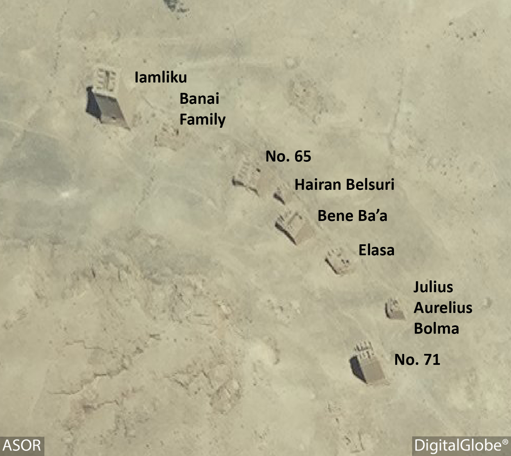 Figure 9. Satellite imagery of Tower Tombs. No visible damage (DigitalGlobe; June 26, 2015).